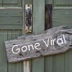 going viral—500 year ago